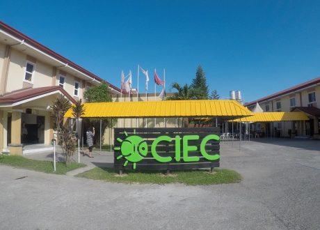 Các khóa học dài hạn tại trường Anh ngữ CIEC